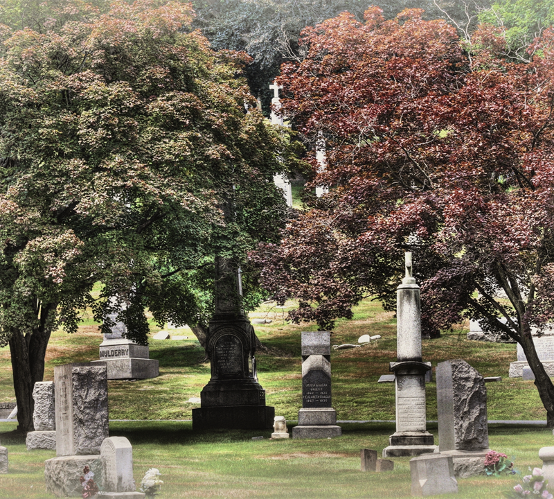 A Walk Through Time: Cool Facts about Grand Old Cemeteries